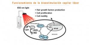 Diagrama de funcionamiento de la bioestimulacion capilar
