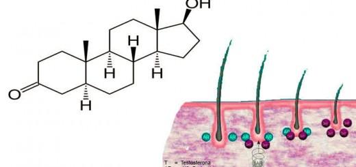 dihidrotestosterona